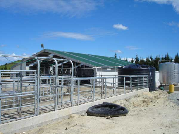 Cowsheds-&-various-260